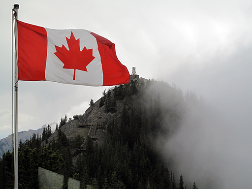close up of Canadian flag waving with the view of forest