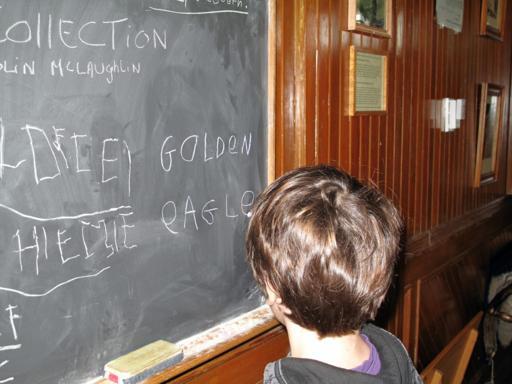 little boy in front of a board in a kid's room
