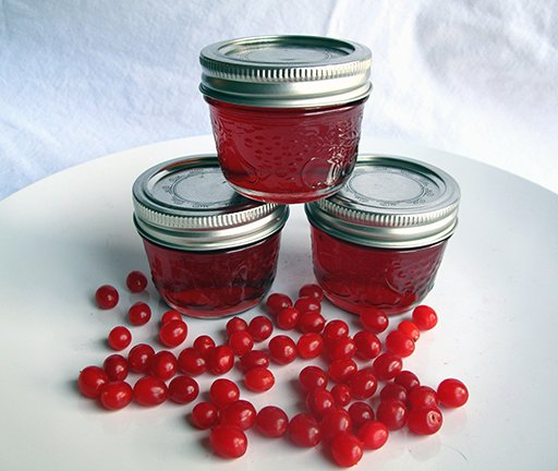 Highbush cranberry jelly in canisters with cover