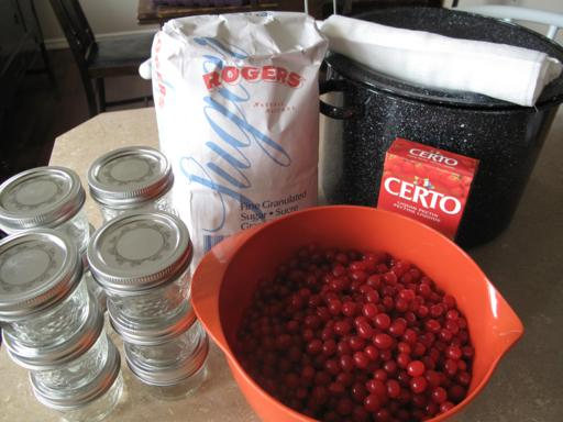 ingredients needed in making high bush cranberry jelly