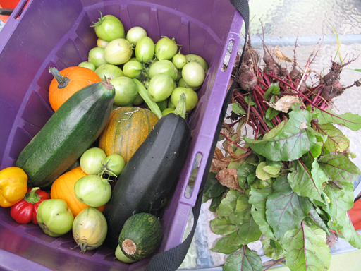variety of fresh vegetables in a violet container