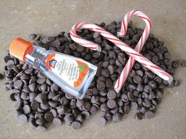 some chocolate chips, small bottle of mint flavoring and peppermint candy cane