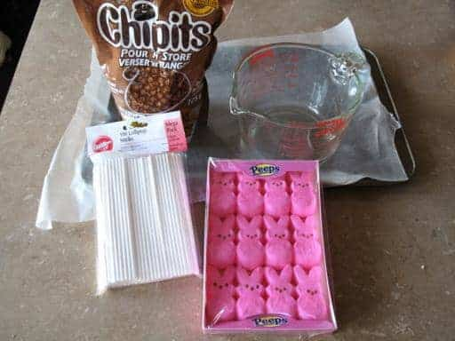 Ingredients Needed in making Marshmallow Peeps