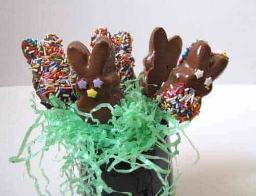 Colorful Chocolate Dipped Marshmallow Peeps on Sticks in a black container