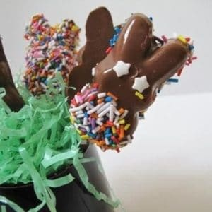 Close up Colorful Chocolate Dipped Marshmallow Peeps on Sticks in a black container