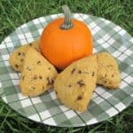 a pumpkin and 4 pieces of Pumpkin Spice Scones in a checkered green plate on the grass