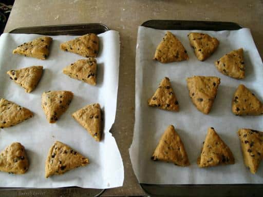 triangle shaped slices of Pumpkin Spice Scones dough placed on a baking sheets lined with parchment papers