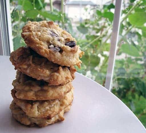 stack of Coconut Cookies in white plate on a green leafy background