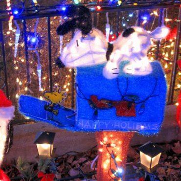 christmashouse2_512x683