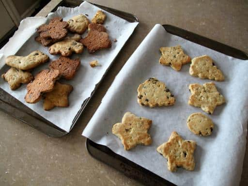 oven baked biscotti in baking sheets lined with parchment paper