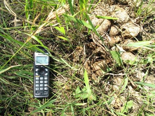 phone set on intercom