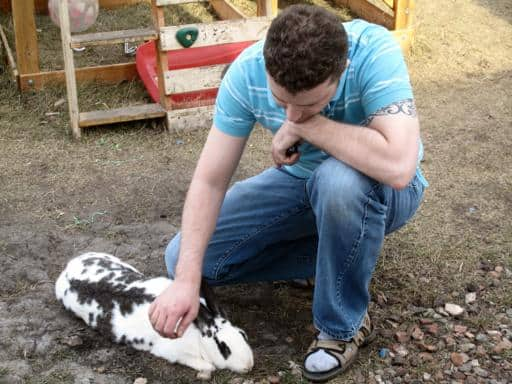 man petting the white spotted rabbit