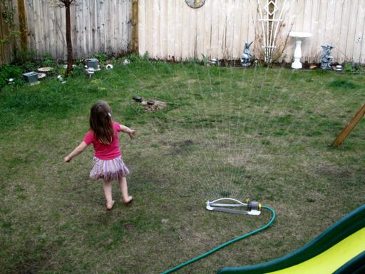 little girl enjoying the water from hose in the lawn