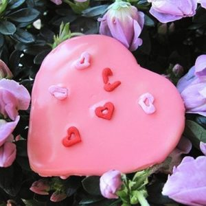 Heart Shaped Pink Cherry Sugar Cookie on top of flowers