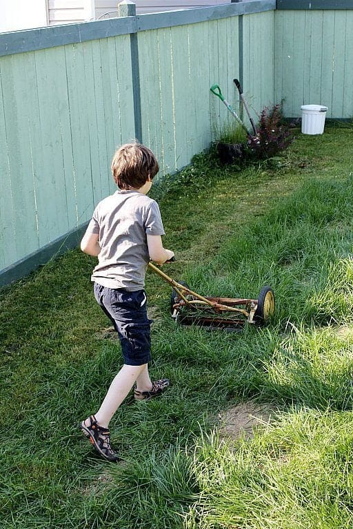 young boy pushing an old fashioned grass cutter
