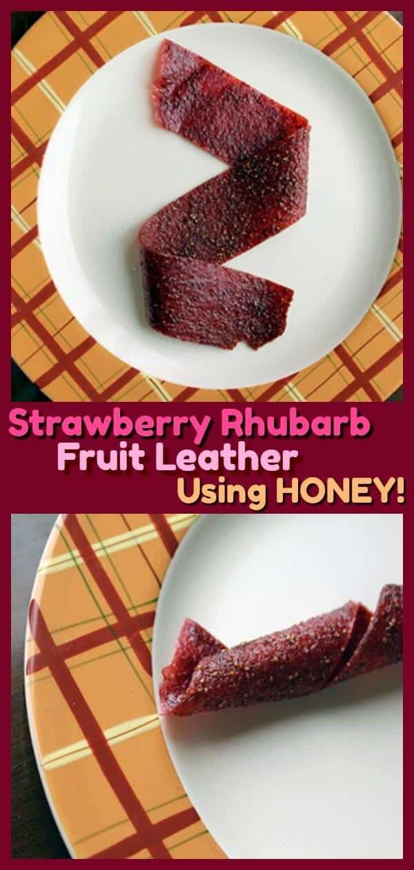 Homemade Strawberry Rhubarb Fruit Leather USING HONEY! The kids loved this - and so did the adult in the house! A great way to use up rhubarb! #recipes #rhubarb #strawberry #strawberries #recipes #family #cooking #baking #kids #spring #summer