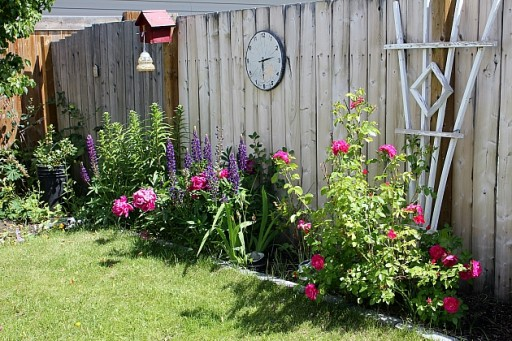 the yard with blooming flowers the a wall clock
