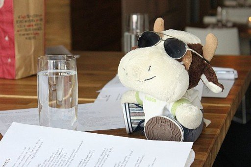 a stuff toy cow on the table with the sun glasses