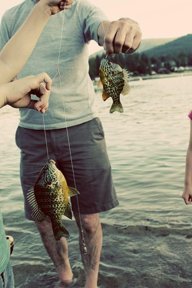 The Families That Fish Together....