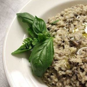 close up of wild mushroom risotto in a white plate, garnish with basil leaves