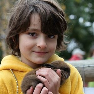 close up of a boy holding a brown rabbit