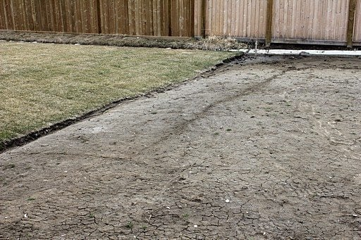 the backyard with dried soil and grasses