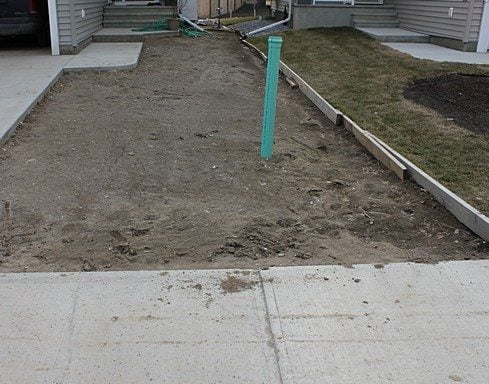 a vacant back yard