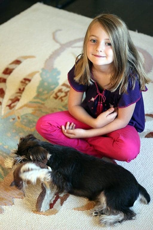 top down shot of young girl together with her dog sitting on the carpeted floor