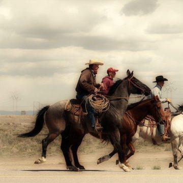 Idaho Cowboys
