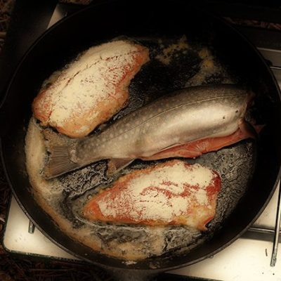Alberta Brook Trout: Beyond Field To Table
