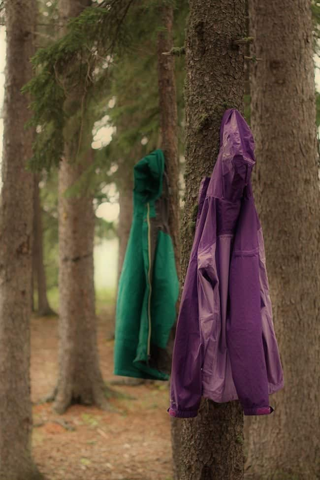 green and violet jackets hung in pine tress