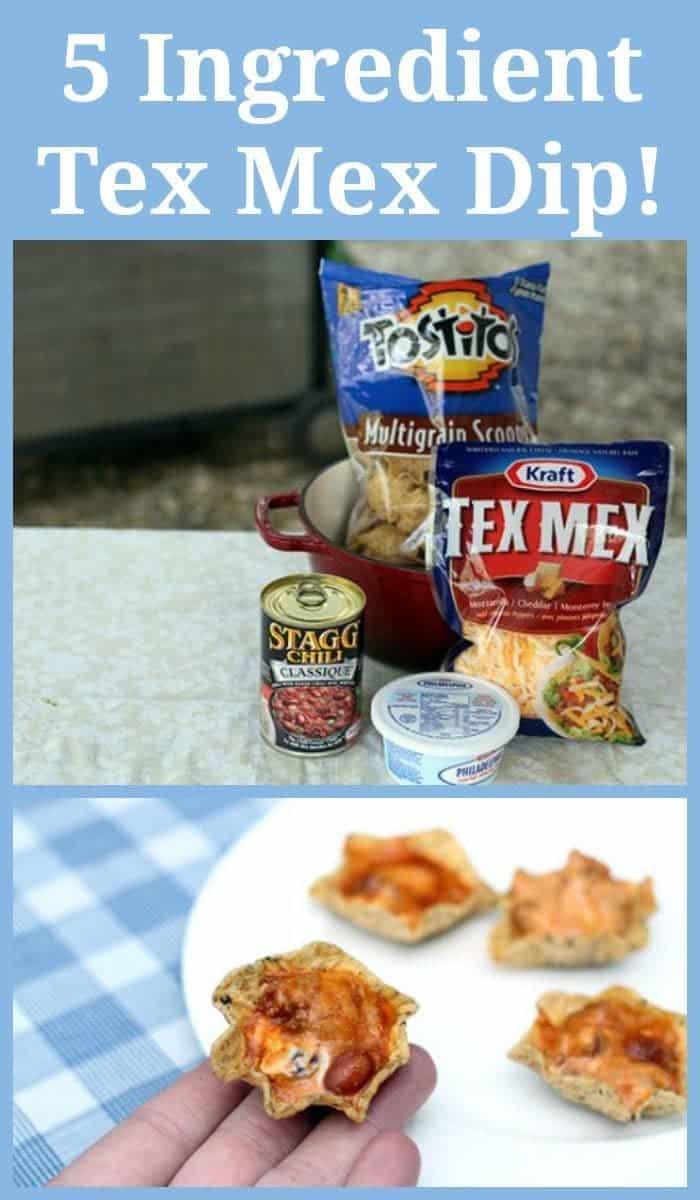 Five Ingredient Tex Mex Dip