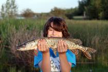 kadesfirstjackfish