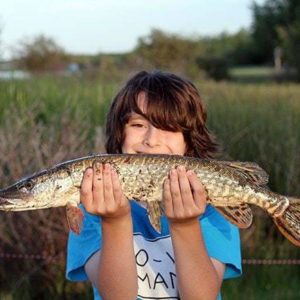 young boy wearing blue shirt holding a Northern Pike