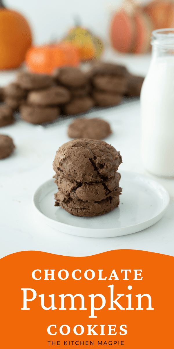 How to make amazing Double Chocolate Chip Pumpkin Cookies! Love chocolate and pumpkin? Then these are the cookies for you!