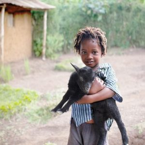 young kid carrying a black baby goat