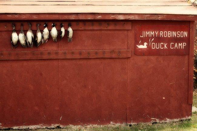 Jimmy Robinson's Duck Lodge