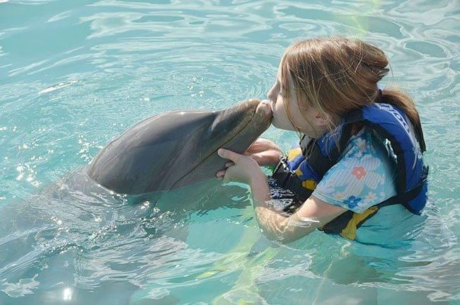 dolphinkiss