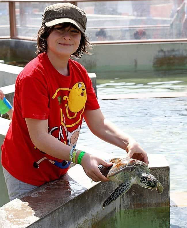 turtlefarm1