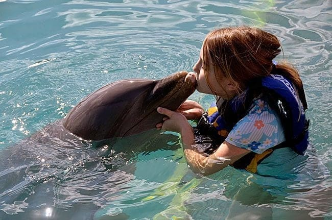 dolphinkiss2