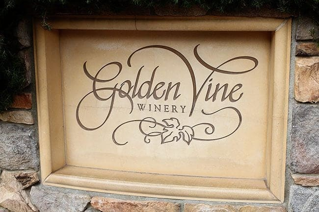 Golden Vine Winery