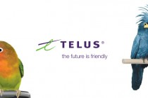 Telus-birdies