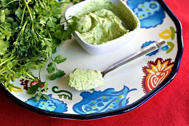 Cilantro Butter in a white ceramic bowl and in a spoon, fresh cilantro beside it on a printed plate