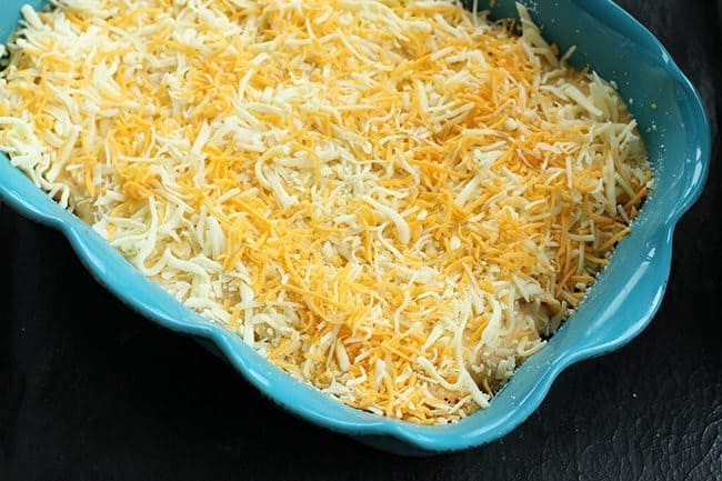 taco pasta shells topped with shredded cheese in a baking pan
