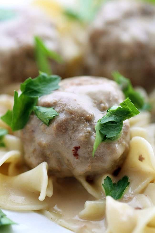 Turkey-Swedish-Meatballs2