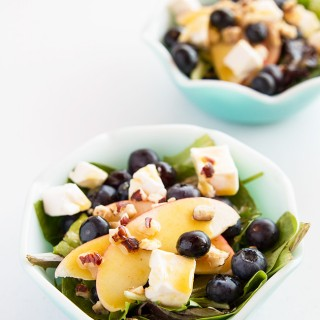 blueberryappleswisssalad-frenchs