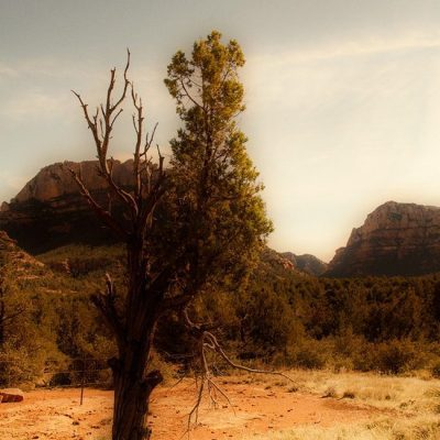 I Left My Heart in Sedona