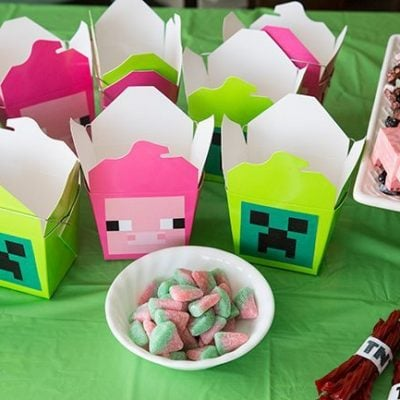 How To Throw A Simple Minecraft Birthday Party – Part 2!