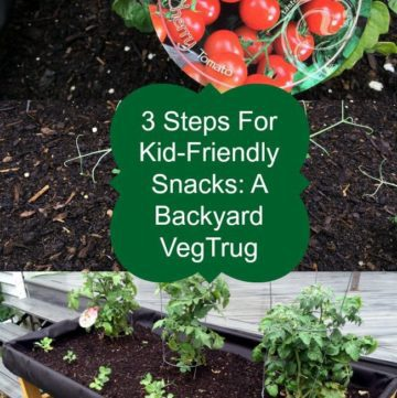 3 Steps  For Kid-Friendly Snacks: A Backyard VegTrug