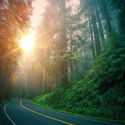 How to Prevent & Manage Roadside Problems on Road Trips